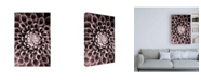 "Trademark Global PhotoINC Studio Just Open Canvas Art - 27"" x 33.5"""