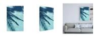 """Trademark Global PhotoINC Studio Turquoise Shadow Canvas Art - 36.5"""" x 48"""""""