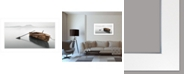 """Trendy Decor 4U Solitude by Moises Levy, Ready to hang Framed Print, White Frame, 39"""" x 21"""""""
