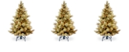 National Tree Company National Tree 4 .5' Carolina Pine Tree with 450 Clear Lights