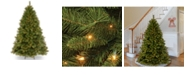 National Tree Company 6 .5't. Winchester Pine Tree with 400 Clear Lights