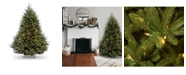 National Tree Company National Tree 7 .5' Natural Fraser Fir Hngd Tree with 1200 Clear Lights