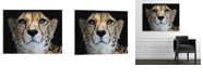 Artissimo Designs Portrait of a Cheetah, Limpopo, South Africa Printed Acrylic