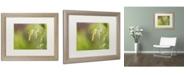 """Trademark Global Cora Niele 'Sea Oats Grass' Matted Framed Art - 20"""" x 16"""" x 0.5"""""""