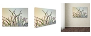 "Trademark Global Cora Niele 'Dewy Grass' Canvas Art - 47"" x 35"" x 2"""