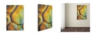 "Trademark Global Cora Niele 'Orange Drops' Canvas Art - 47"" x 30"" x 2"""
