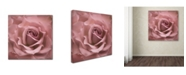 "Trademark Global Cora Niele 'Misty Rose Pink Rose' Canvas Art - 24"" x 24"" x 2"""