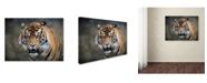 "Trademark Global Jai Johnson 'Bengal Tiger' Canvas Art - 19"" x 14"" x 2"""