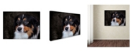 "Trademark Global Jai Johnson 'Bernese Mountain Dog' Canvas Art - 19"" x 14"" x 2"""