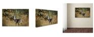"Trademark Global Jai Johnson 'Buck In Autumn' Canvas Art - 32"" x 22"" x 2"""