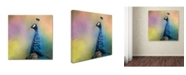 "Trademark Global Jai Johnson 'Peacock 8' Canvas Art - 14"" x 14"" x 2"""
