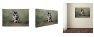 "Trademark Global Jai Johnson 'Rooftop Roost' Canvas Art - 47"" x 30"" x 2"""