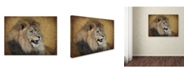 "Trademark Global Jai Johnson 'Snarling Male Lion Portrait' Canvas Art - 47"" x 35"" x 2"""