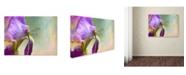 "Trademark Global Jai Johnson 'Say Hello To Spring' Canvas Art - 19"" x 14"" x 2"""