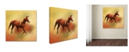 "Trademark Global Jai Johnson 'A Dash Of Chestnut Mare' Canvas Art - 35"" x 35"" x 2"""