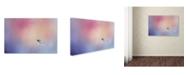 "Trademark Global Jai Johnson 'I Wish I Could Fly - Bluebird 1' Canvas Art - 32"" x 22"" x 2"""