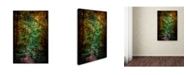 "Trademark Global Jai Johnson 'Shiloh Stream 1' Canvas Art - 47"" x 30"" x 2"""