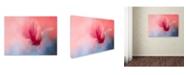 "Trademark Global Jai Johnson 'Spring Tulip Magnolia' Canvas Art - 32"" x 24"" x 2"""