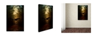 "Trademark Global Jai Johnson 'Guardian Of The Forest' Canvas Art - 19"" x 12"" x 2"""