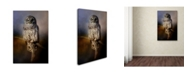 "Trademark Global Jai Johnson 'Last Catch Of The Day' Canvas Art - 19"" x 12"" x 2"""