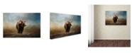 "Trademark Global Jai Johnson 'Grizzly On The Rocks' Canvas Art - 19"" x 12"" x 2"""