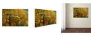 "Trademark Global Cora Niele 'Loveliest Smile' Canvas Art - 24"" x 16"" x 2"""