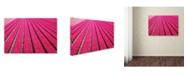 "Trademark Global Cora Niele 'Tulip Field Hot Pink' Canvas Art - 19"" x 12"" x 2"""