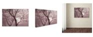 "Trademark Global Cora Niele 'Hazy Dawn With Tree Tree Silhouettes' Canvas Art - 24"" x 16"" x 2"""