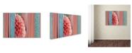 "Trademark Global Cora Niele 'Salmonpink Dahlia Collage' Canvas Art - 47"" x 30"" x 2"""