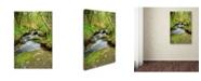 "Trademark Global Cora Niele 'The Chaos Of Huelgoat Iii' Canvas Art - 19"" x 12"" x 2"""