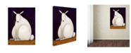 "Trademark Global Daniel Patrick Kessler 'Bunny' Canvas Art - 19"" x 14"" x 2"""