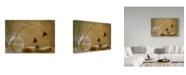 "Trademark Global Delphine Devos 'A Book' Canvas Art - 19"" x 2"" x 12"""