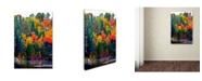 "Trademark Global The Lieberman Collection 'Lake 2' Canvas Art - 24"" x 16"" x 2"""