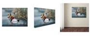"Trademark Global Wanda Mumm 'Spring Haze' Canvas Art - 24"" x 18"" x 2"""