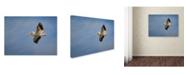 "Trademark Global Jai Johnson 'Watching The World From Above' Canvas Art - 24"" x 18"" x 2"""