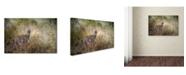 "Trademark Global Jai Johnson 'Young Buck' Canvas Art - 19"" x 12"" x 2"""
