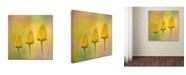 "Trademark Global Jai Johnson 'Triplets' Canvas Art - 35"" x 35"" x 2"""