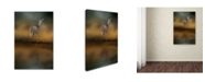 "Trademark Global Jai Johnson 'Sunrise At The Pond' Canvas Art - 19"" x 12"" x 2"""