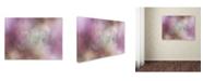 "Trademark Global Jai Johnson 'White Peony 2' Canvas Art - 47"" x 35"" x 2"""