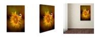 "Trademark Global Jai Johnson 'Tiny Surprise' Canvas Art - 32"" x 22"" x 2"""