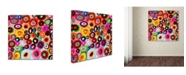 """Trademark Global Sylvie Demers 'Tourbillons' Canvas Art - 14"""" x 14"""" x 2"""""""
