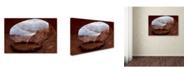 "Trademark Global Mike Jones Photo 'False Kive Fisheye' Canvas Art - 32"" x 22"" x 2"""