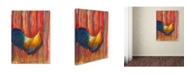 """Trademark Global Michelle Faber 'Mr Rooster' Canvas Art - 47"""" x 35"""" x 2"""""""
