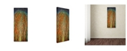 """Trademark Global Michelle Faber 'The Wildwood Forest' Canvas Art - 19"""" x 8"""" x 2"""""""