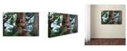 """Trademark Global Robert Harding Picture Library 'Sloth' Canvas Art - 47"""" x 30"""" x 2"""""""