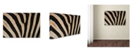 "Trademark Global Robert Harding Picture Library 'Zebra Skin' Canvas Art - 47"" x 30"" x 2"""
