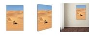 "Trademark Global Robert Harding Picture Library 'Desert Scene.' Canvas Art - 24"" x 16"" x 2"""