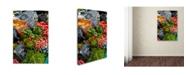 "Trademark Global Robert Harding Picture Library 'Market 2' Canvas Art - 32"" x 22"" x 2"""