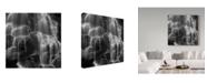 """Trademark Global Moises Levy 'Oregon Flow' Canvas Art - 35"""" x 35"""" x 2"""""""