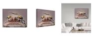 """Trademark Global Jimmy Hoffman 'Blind Spot' Canvas Art - 47"""" x 2"""" x 35"""""""